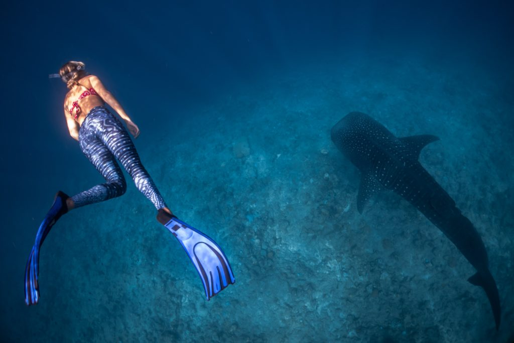 woman snorkeling over a fish