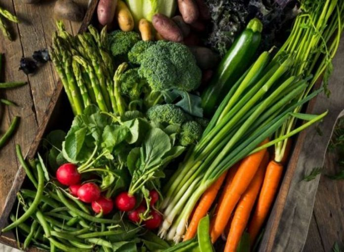 4 Best Green and Healthy Foods To Complete Your Day