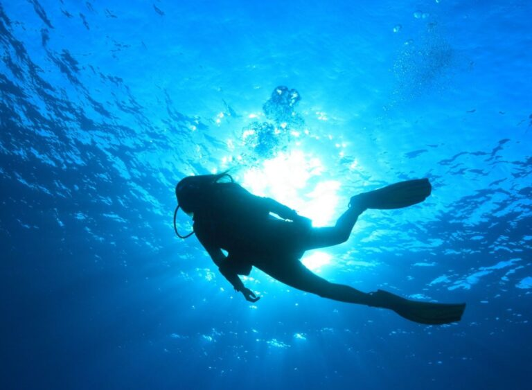 7 Interesting Things About The Life Of A Scuba Diver