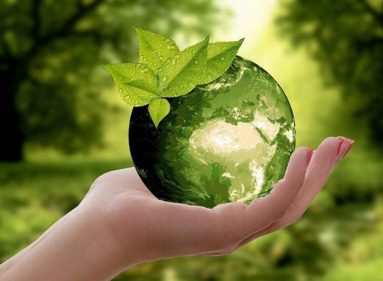 11 Ways To Become More Sustainable